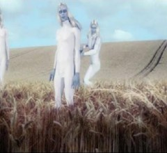 aliens at crop circle