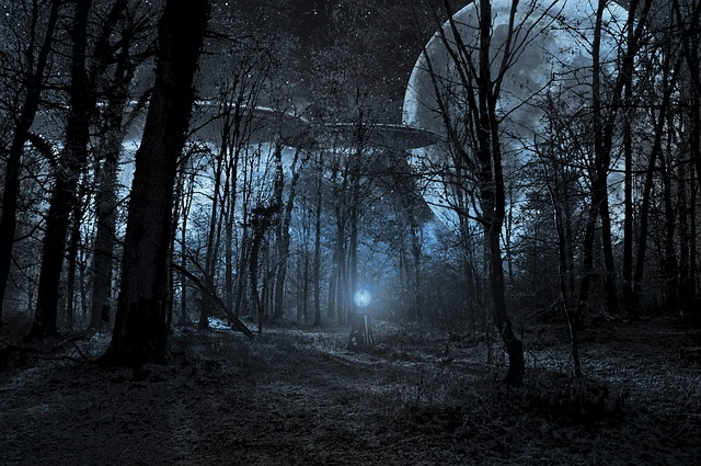 UFOs forest at night