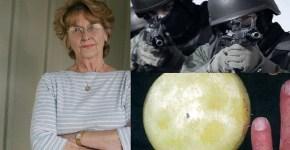 Joann Davis Moon Rock