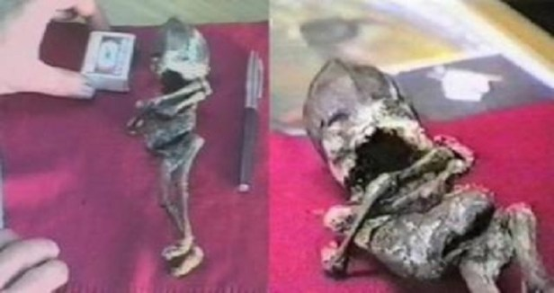 Small alien remains found in Russia examination