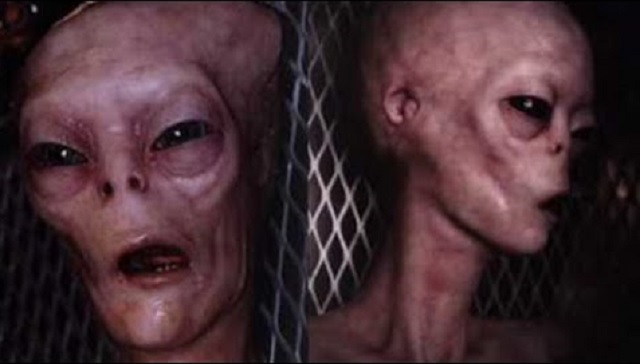 dead alien photo