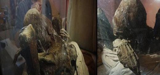 Mystifying mummy found in Peru raises questions