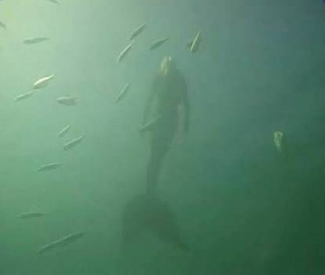 Mermaid caught on camera