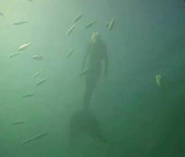 Mermaid caught on camera