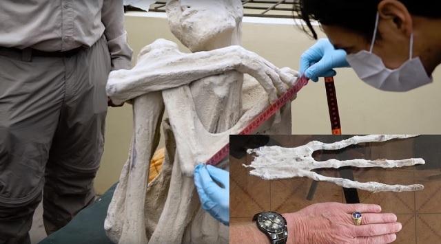 Mummified humanoid alien examination and alien hand