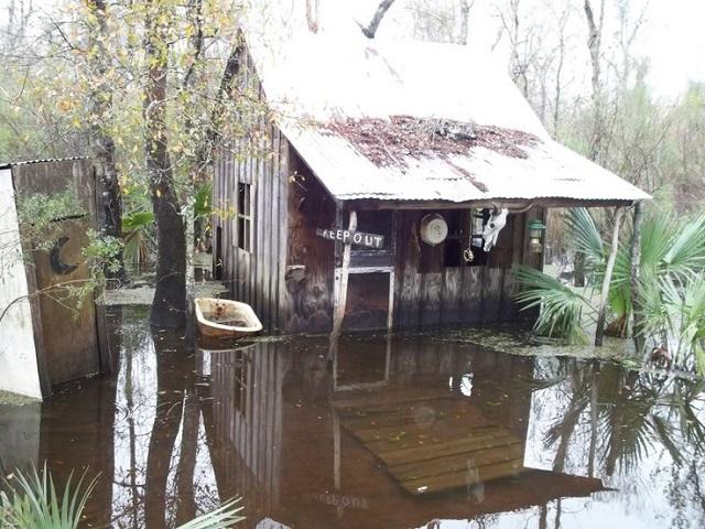 Swamp shack voodoo priestess Julia Brown