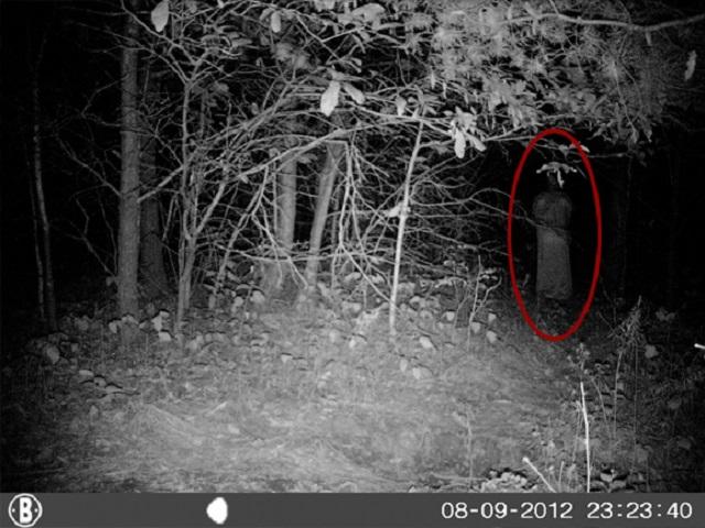 Robed figure standing in woods