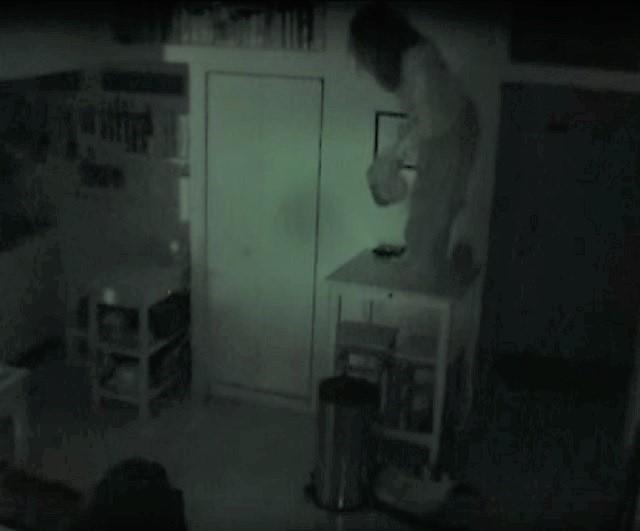 Woman secretly lives inside a vent at strangers home