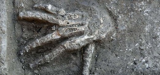 Severed giant hands have been found in Egypt
