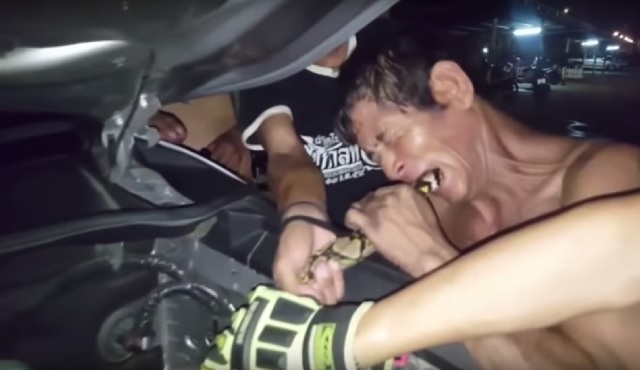 Python snake trapped in truck engine