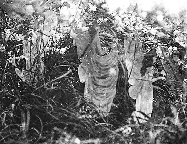 Cottingley fairies fifth photo