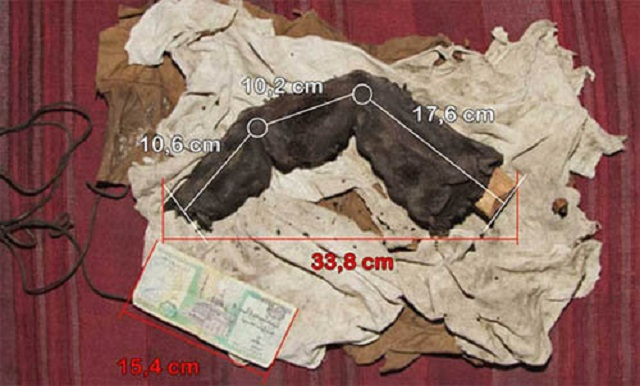 Mummified Foot Long Finger Found measurements