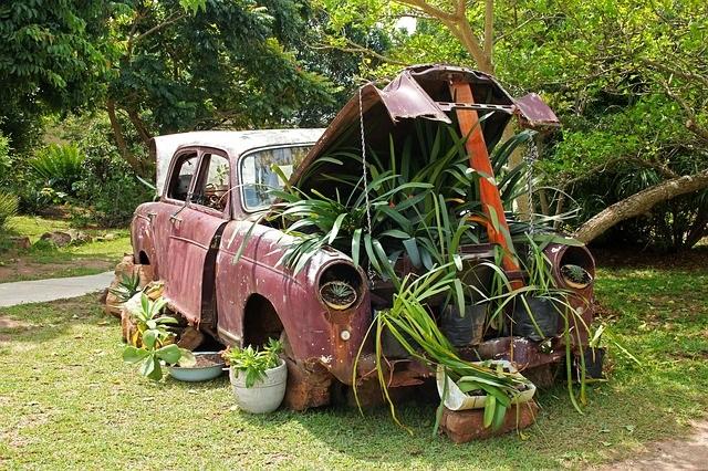 Planted car