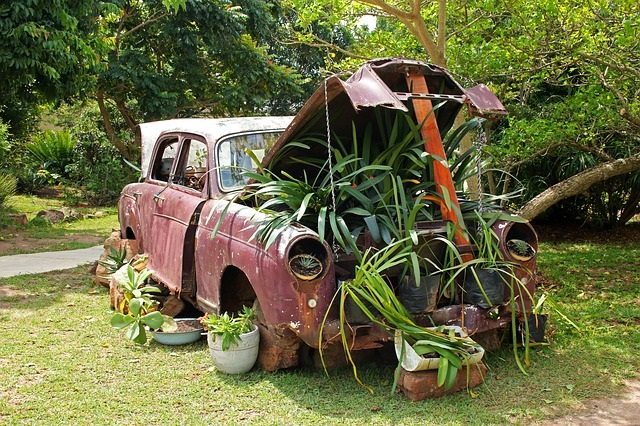 Planted car