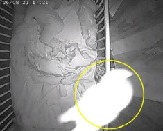 Angelic ghost spirit baby crib