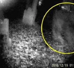 Tony Ferguson ghost capture England cemetery