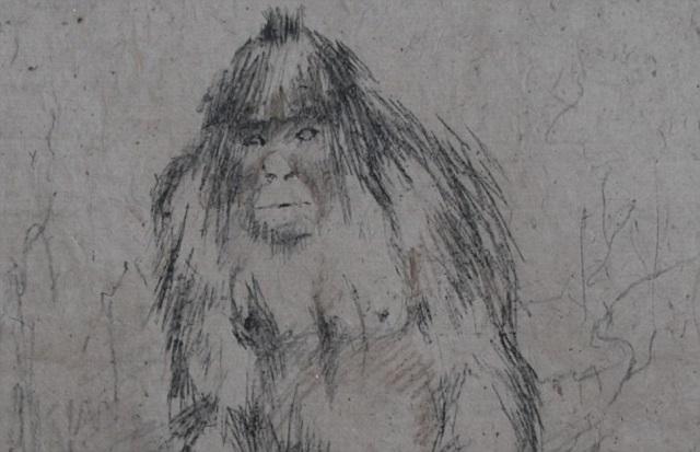 Yeti sketch Russia