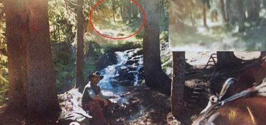 Peculiar Photograph Seems To Show Bigfoot