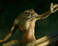Frog from Loveland Ohio Sighting