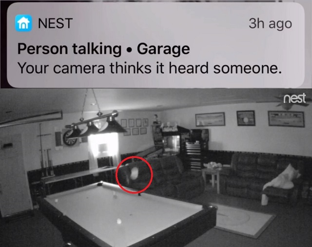 Nest Camera Alert