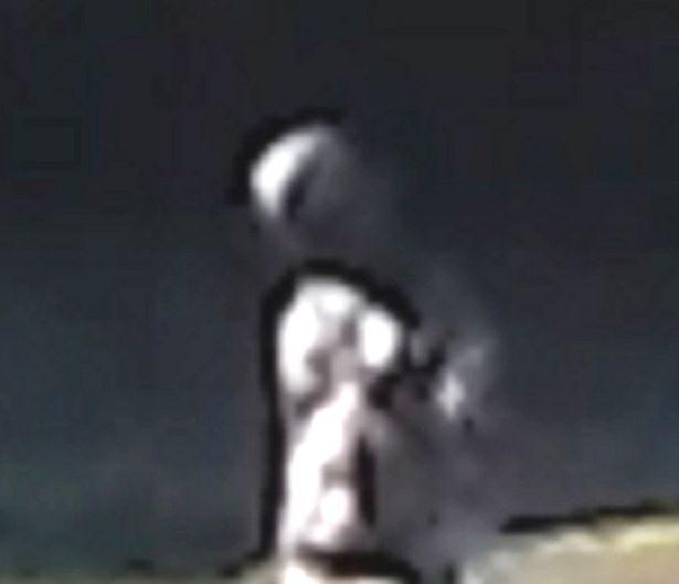 alien photographed at park