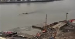 Mysterious Creature Recorded Swimming In Thames River