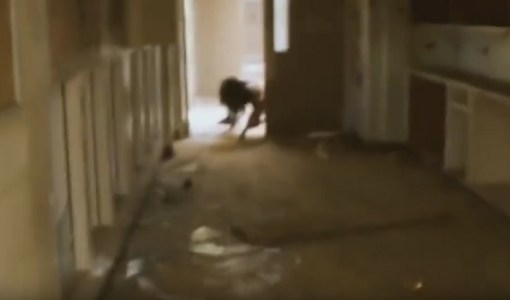 Urban Explorer Friends Find Wandering Asylum Freak