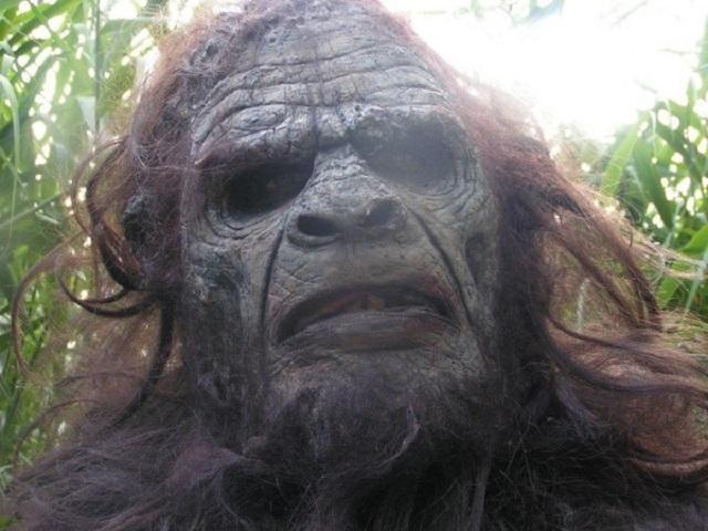 Bigfoot sighting ax wielding