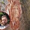 John Dickson Morecambe Lancashire Jesus Face On Tree Trunk