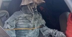 Skeleton Passenger In Car Arizona