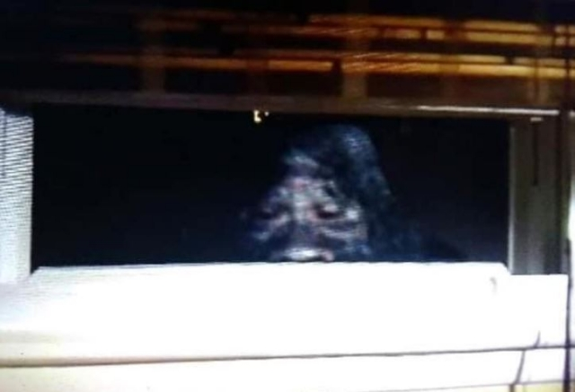 Bigfoot in window