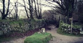 Kitty Jay grave United Kingdom