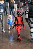 Deadpool Cosplay from 2014's LBCC