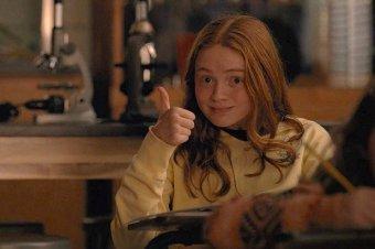 Sadie Sink as Max