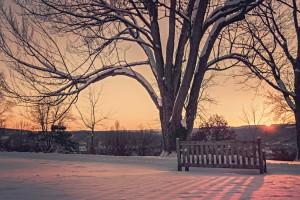 snow-dawn-sunset-winter-large
