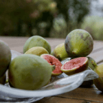 FIGS-A SUPERFOOD