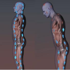 Oxygen flow with proper posture