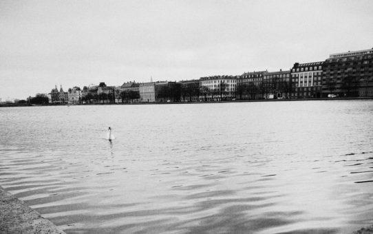Fred in Kopenhagen: Dag 2