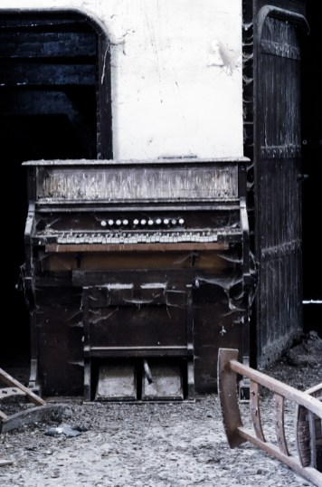 The pigeon church orgel