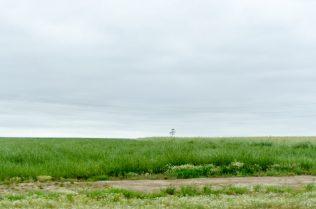 Field - Vlaamse Ardennen
