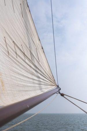 Wad sea-10