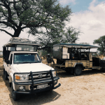 9 ways to maximize your African safari fun