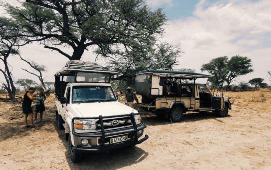 9 ways to maximize your African safari fun
