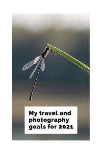 photography goals