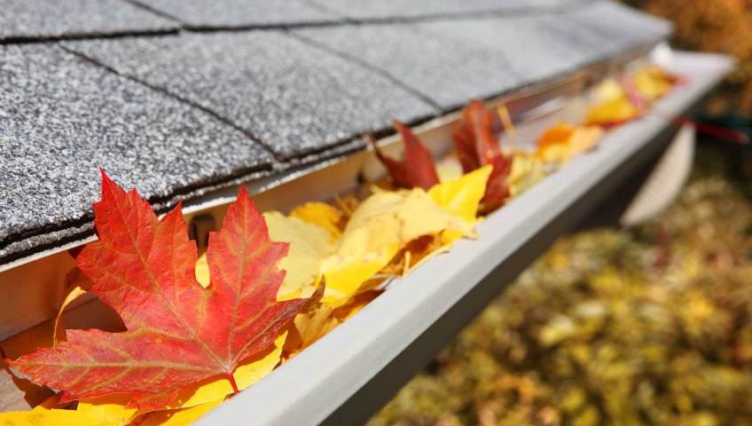 Prep your building for the temperature decline by practicing the best fall roof maintenance tips