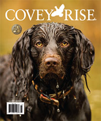 Covey Rise Cover