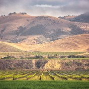 Santa Maria Valley AVA: What to See and Do