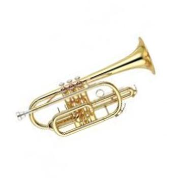 Mes Cornet (Gold) JBCR – 900L