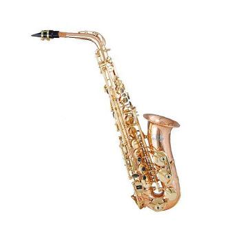 Mes Saxophone (Tina) JBAS – 1010L