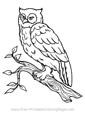 Animal Coloring Pages Free Printable Coloring Pages